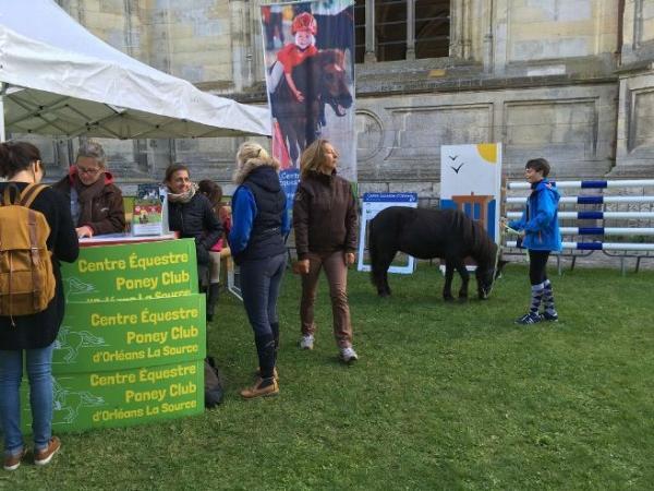 Centre équestre et poney club d'Orléans